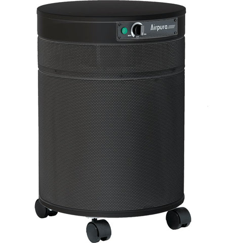 Image of Airpura H600 True HEPA Air Purifier - Heavenly Skin HQ