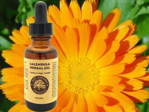 Calendula Herbal Oil - Heavenly Skin HQ