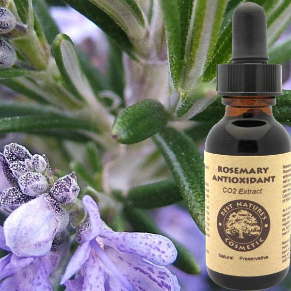 Rosemary Antioxidant CO2 Extract - Heavenly Skin HQ