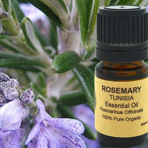 Rosemary Essential Oil - Heavenly Skin HQ