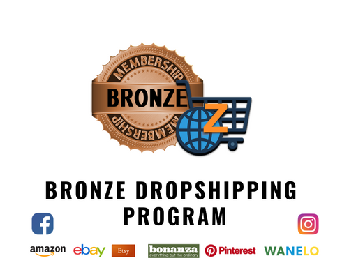 Bronze eCommerce Management Program