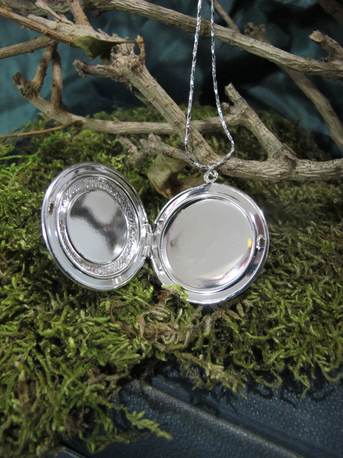 The Fly ~ Preserved Fly in Domed Glass Silver Locket Necklace