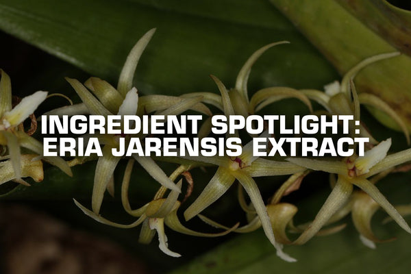 Ingredient Spotlight: Eria Jarensis Extract