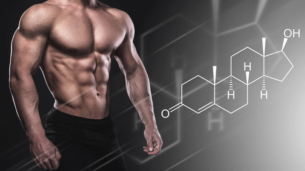 5 Ways to Naturally Boost Testosterone Levels