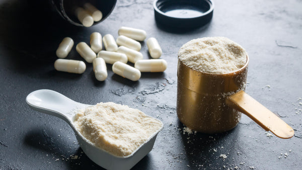Settling the Protein versus BCAA Debate