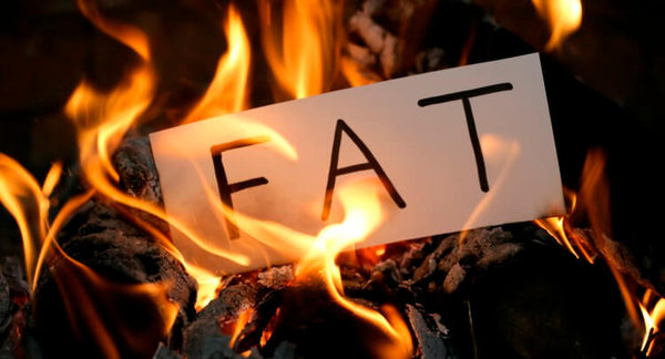 Top Ingredients to Burn Fat -  Alpha-Yohimbine