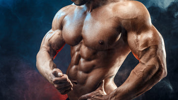 Tips to Break Plateau in Building Muscle