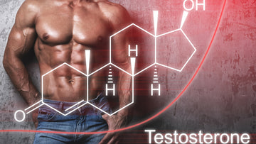 Can You Lower Estrogen and Raise Testosterone at the Same Time?