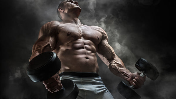 Top Supplements for Muscle Mass