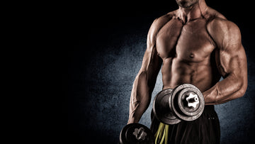 Optimal Protein Intake for Massive Muscle Growth