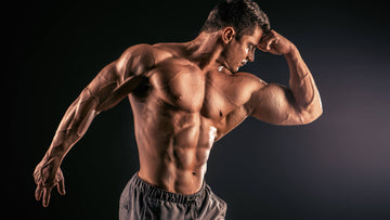 Laxogenin for Muscle Growth
