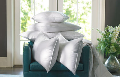 Cushion in 650 x 450 Feather Inner 1100 gms - Zanders & Co