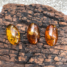 15X25 mm. Oval Shape Calibrated Baltic Amber