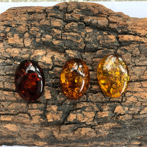 18X25 mm. Oval Shape Baltic Amber