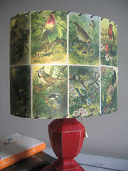 Songbird Lamp Shade