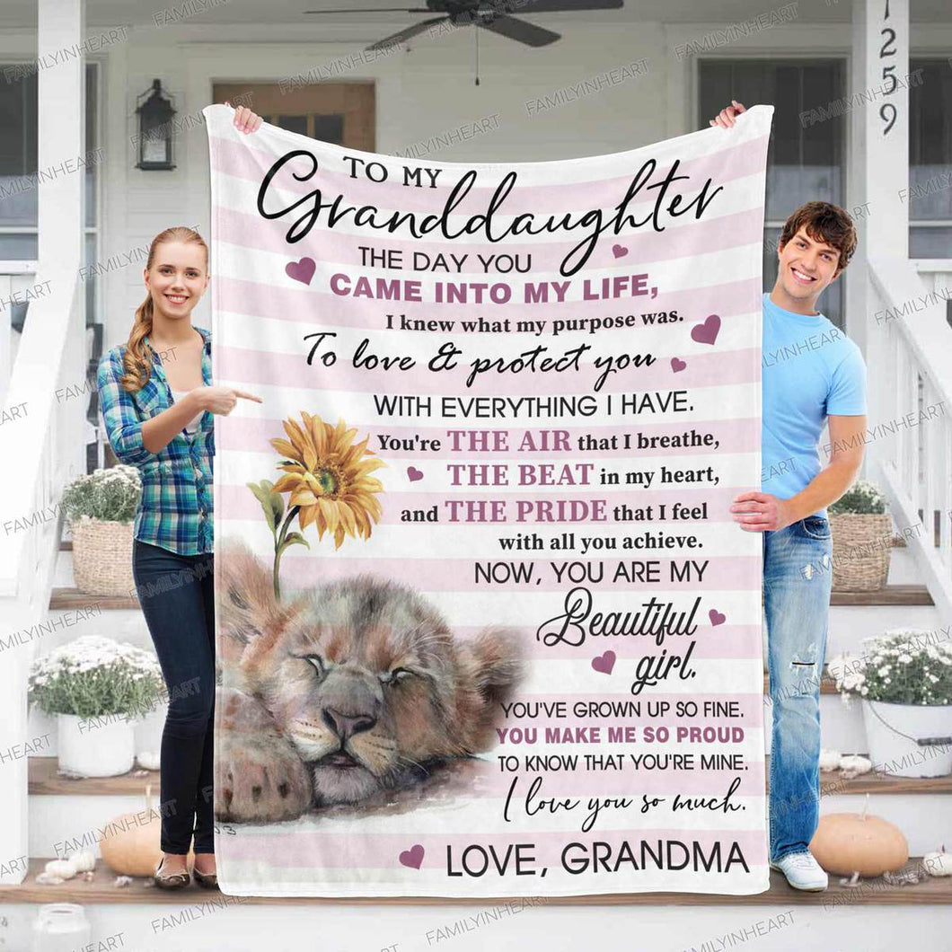 RN2776 - Pride That I Feel - Blanket