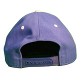 Baseball Cap by Nike in Royal with Snap Back