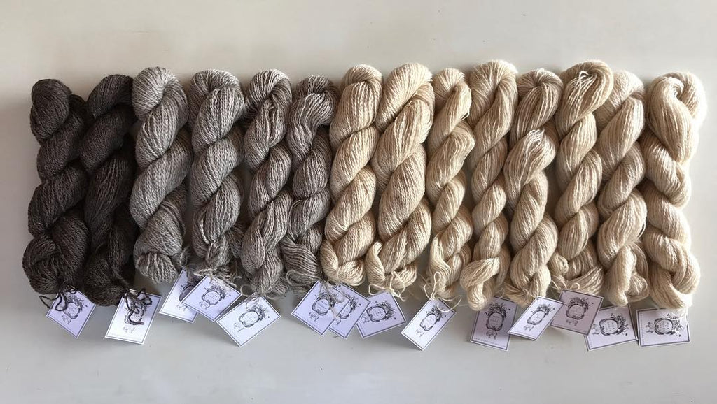 YARN, ROVING & RAW FLEECE