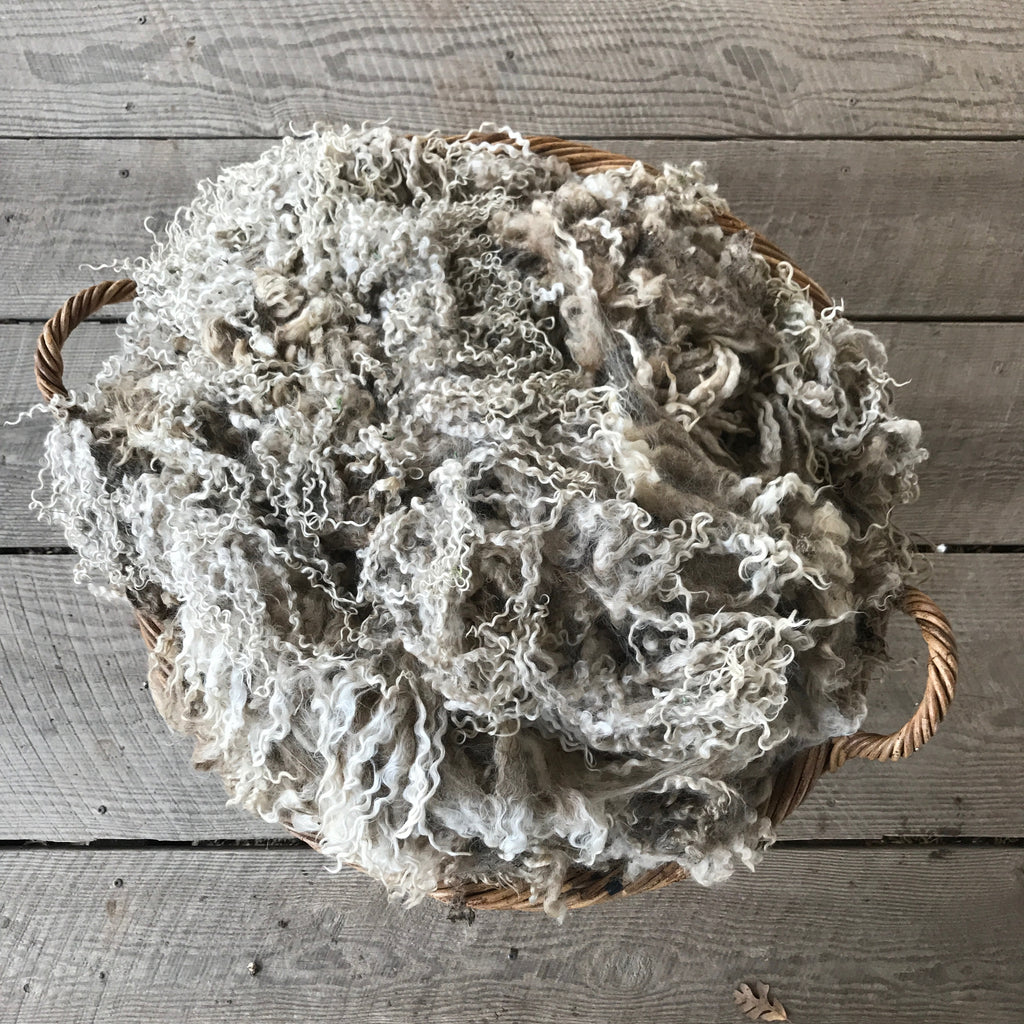 "WENSLEYDALE RAW FLEECE | ""CELESTIAL SNOW"""