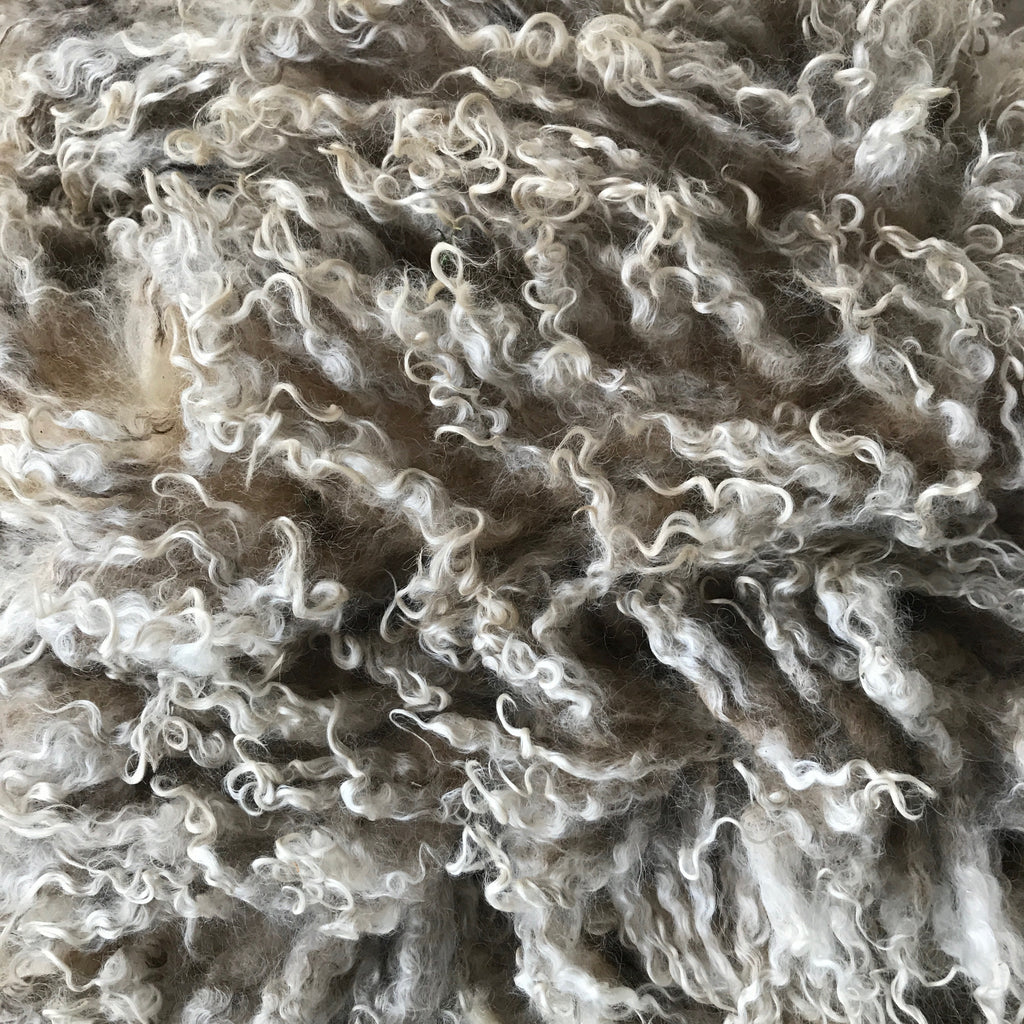 "LEICESTER LONGWOOL RAW FLEECE | ""SNOW WHITE"""