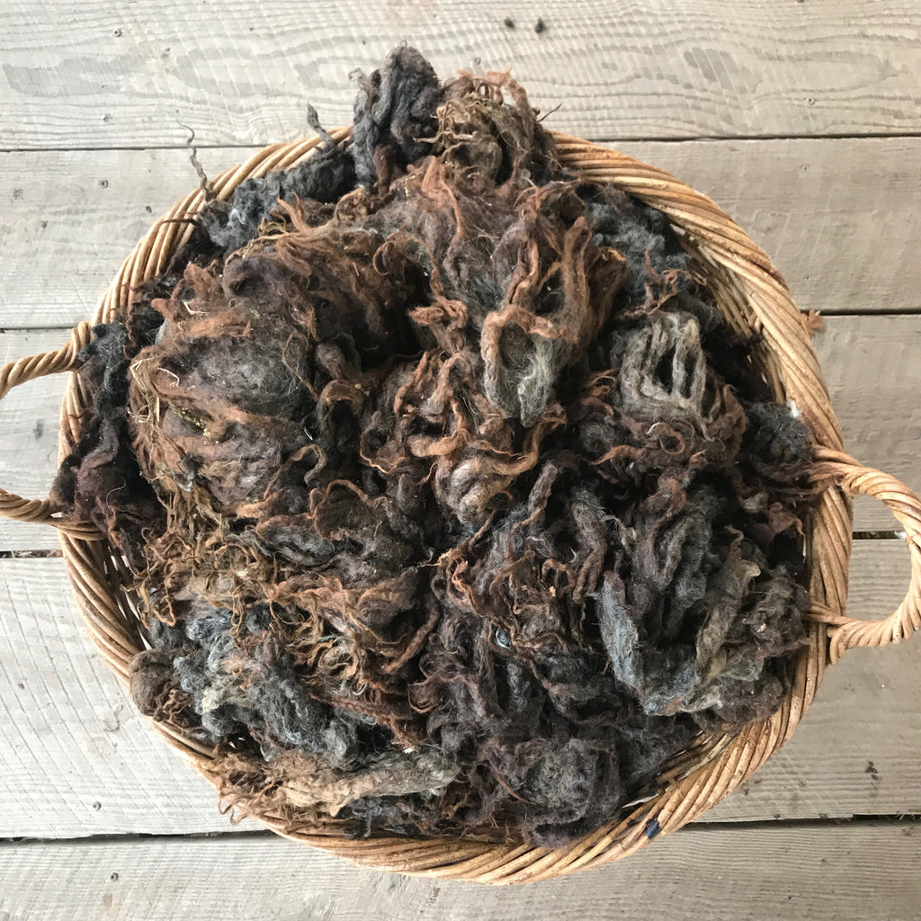 "LEICESTER LONGWOOL LAMB RAW FLEECE | ""SASHA"""
