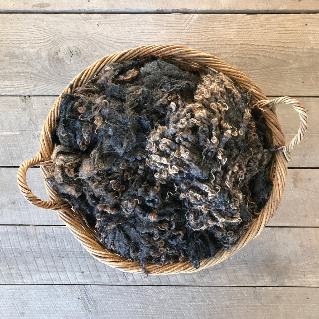 "WENSLEYDALE | WHOLE RAW FLEECE | ""JUNIPER"""