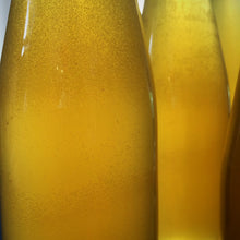 Glam Jams and Cordials- Wild Elderflower-golden bubbles