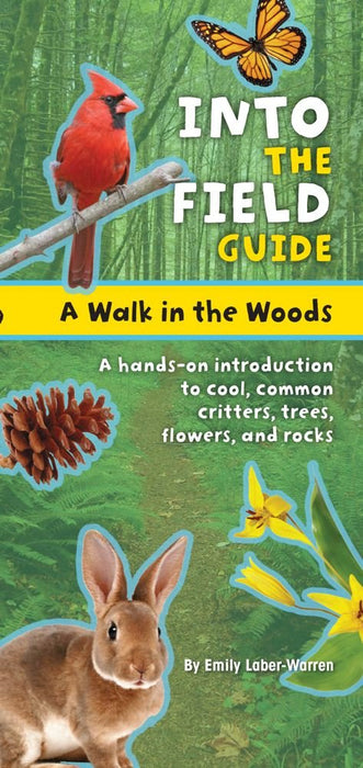 Into The Field Guide Woods Walk