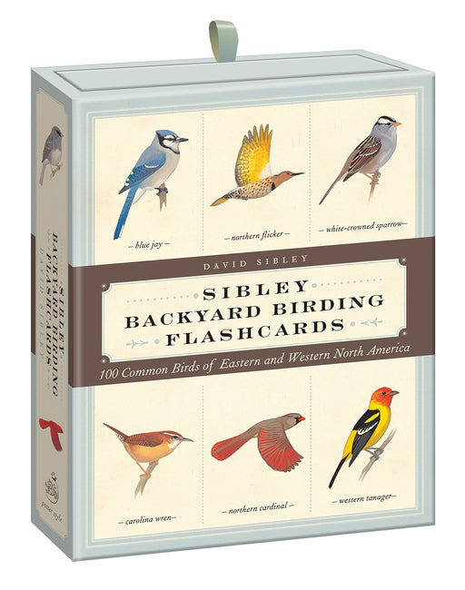 Sibley Backyard Bird Flashcards