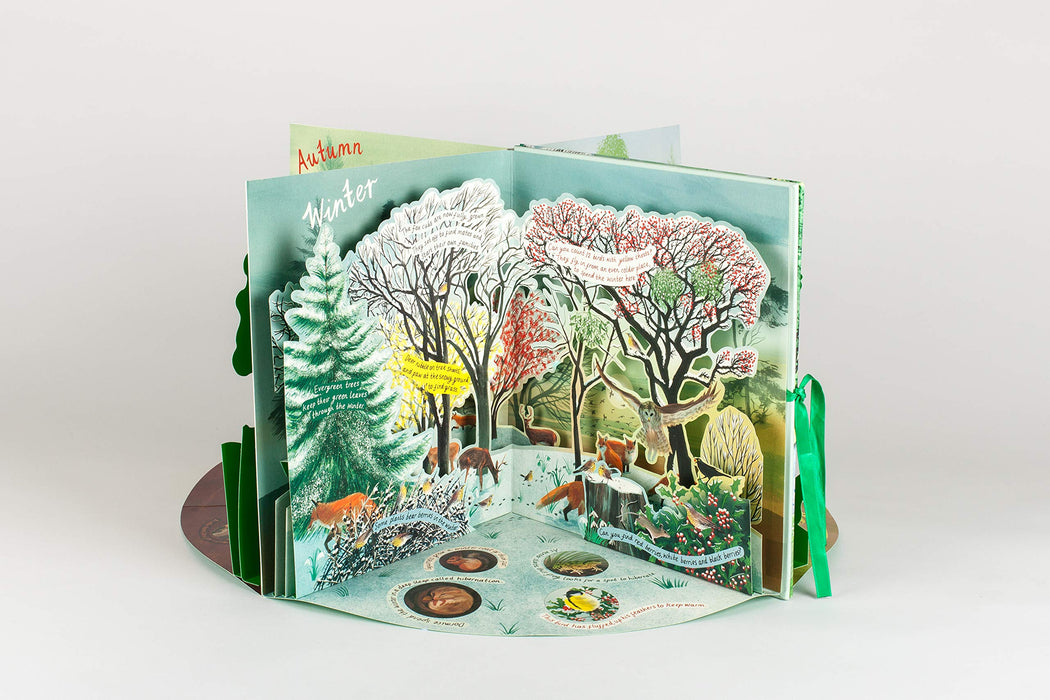 A Year In Nature Carousel Book