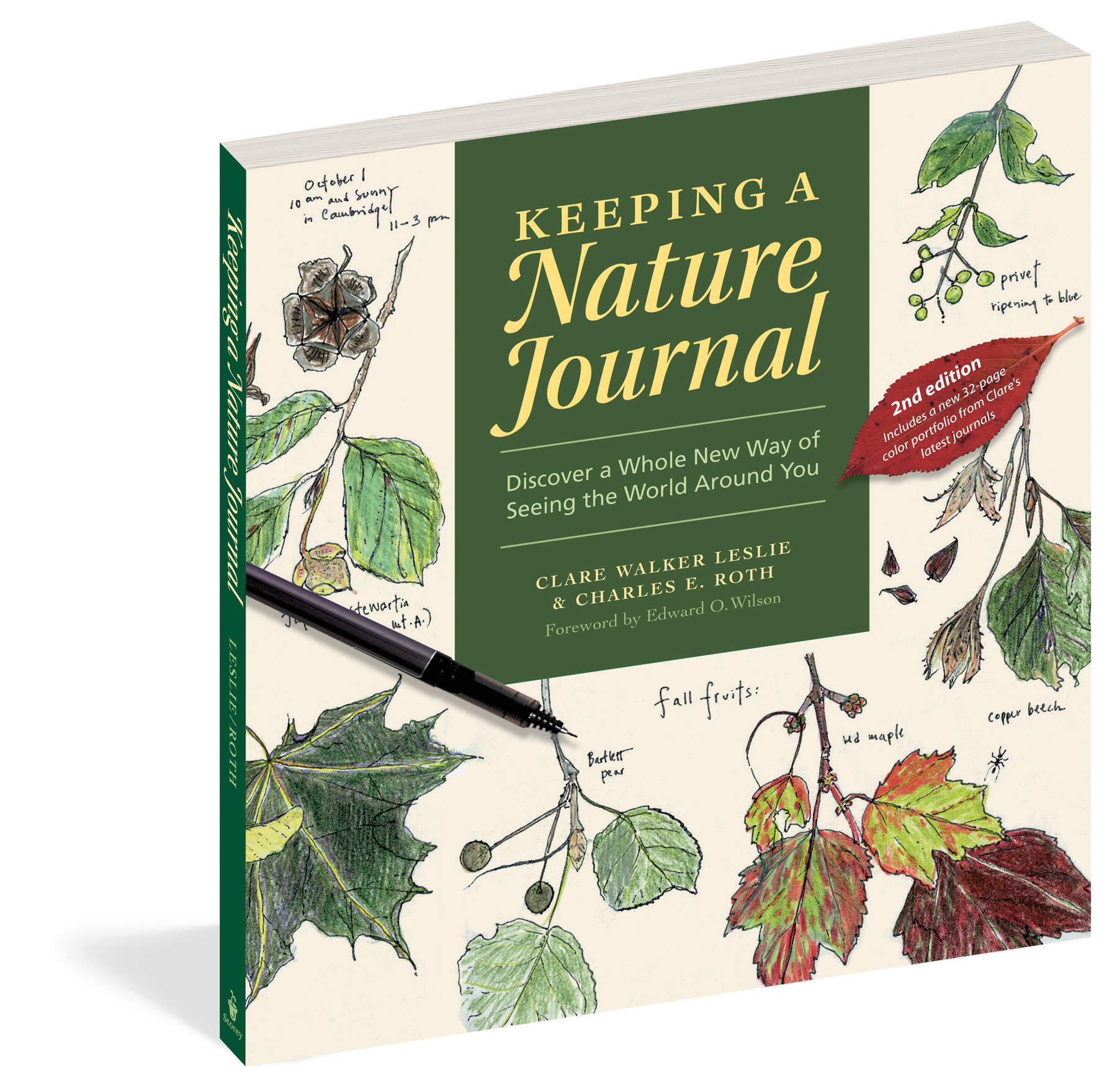 Keeping a Nature Journal