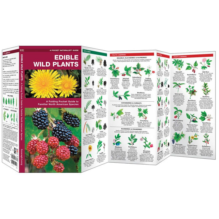 Edible Wild Plants - Pkt Nat