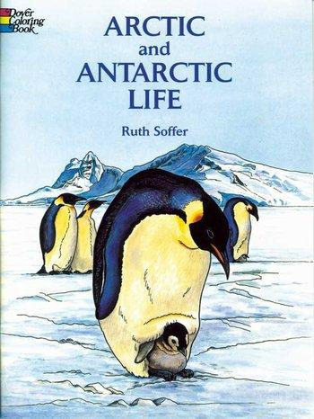 Arctic and Antarctic Life C.B.