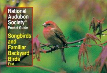 Audubon Songbirds Pocket Guide