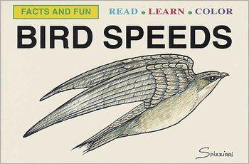 *Bird Speeds