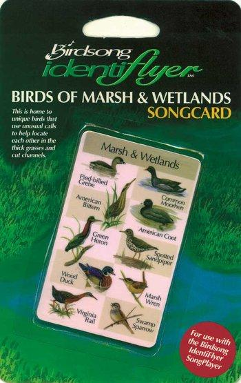 Marsh and Wetlands SongCard