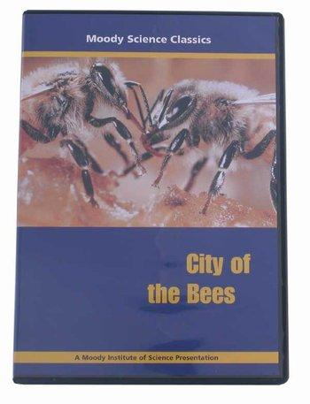 City of Bees DVD