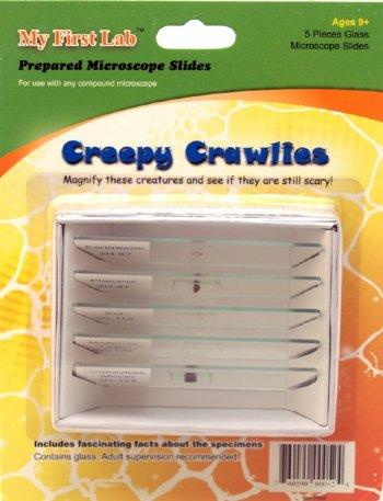 Creepy Crawlies Prepared Slide