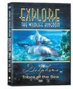 Explore DVD - Dolphins
