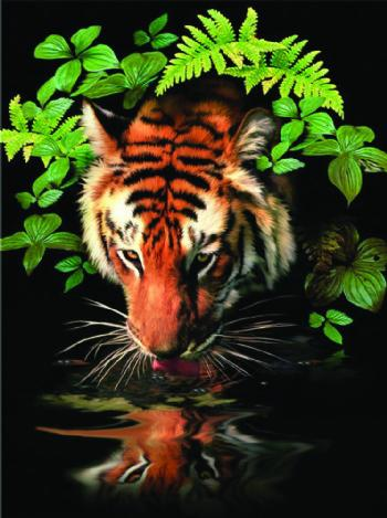 Thirsty Tiger -Painting by numbers