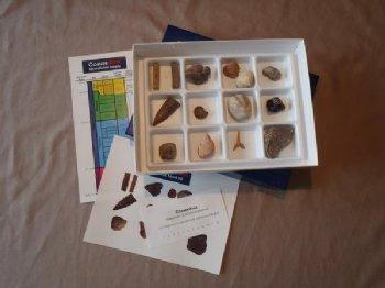 Cornerstone Fossil Kit