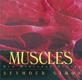 Human Body Series-Muscles