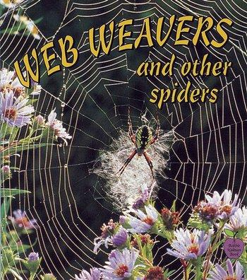Web Weavers