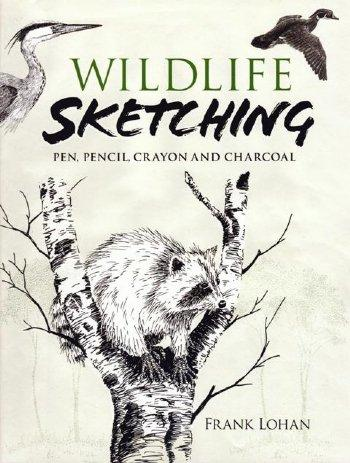 Wildlife Sketching