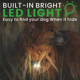 dog shock collar with light