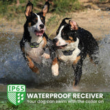 waterpropof dog training collar