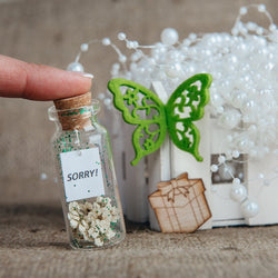 Apology Gift  Sorry! Wish Jar  – Kseniya Revta