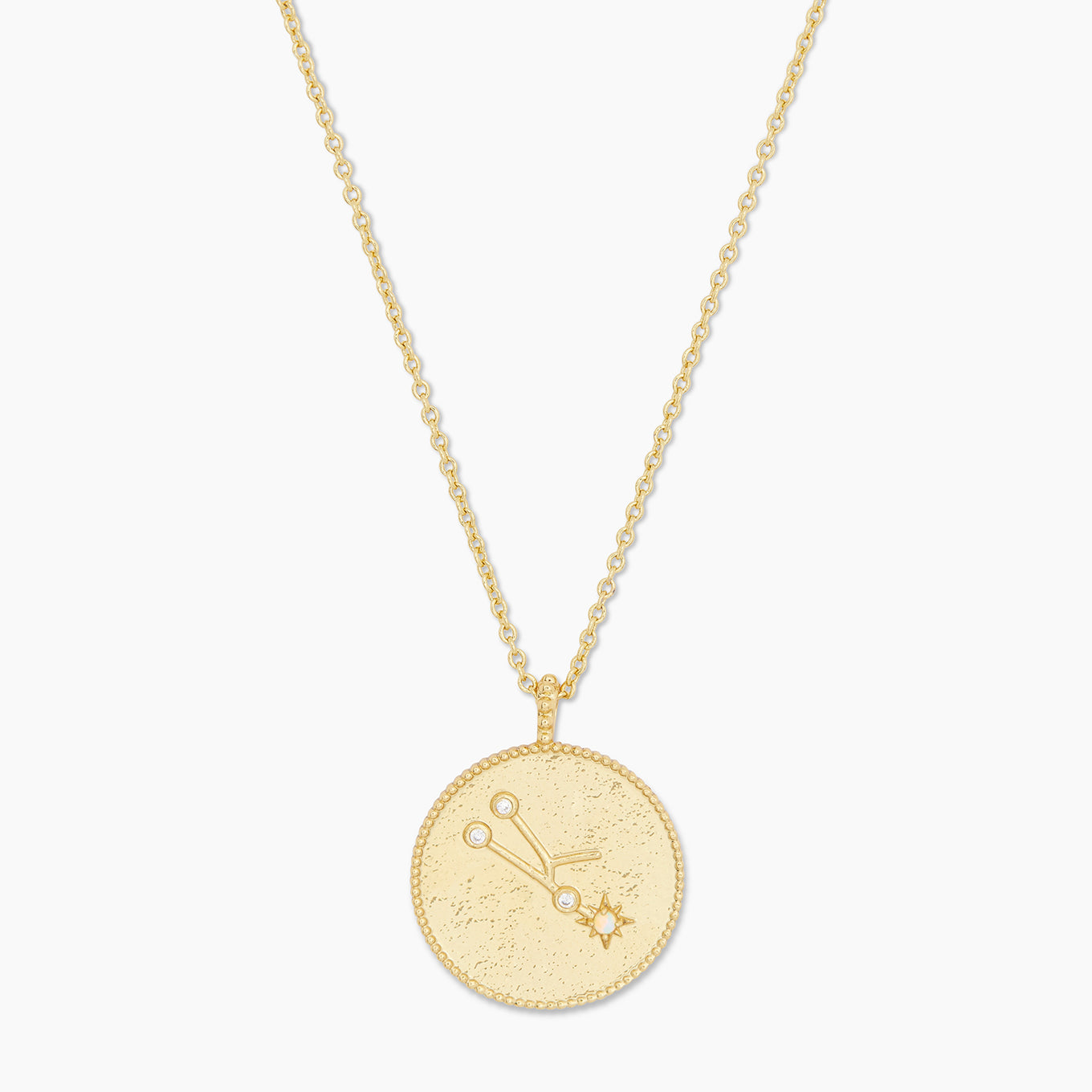 Astrology Coin Necklace (Taurus)