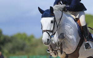Showjumping 101 | A Guide for New Riders