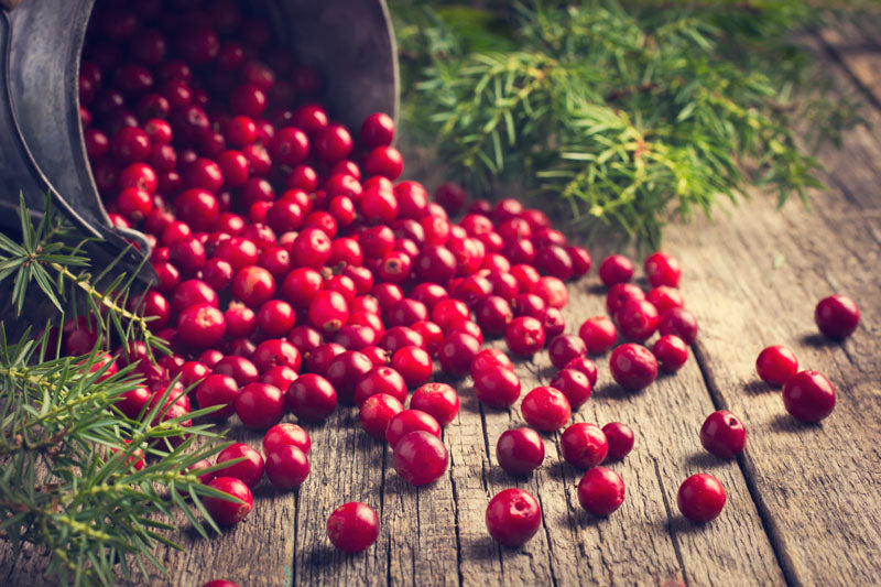 6 Essential Benefits of Cranberry